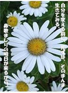 jibunnwosugowaza.jpg
